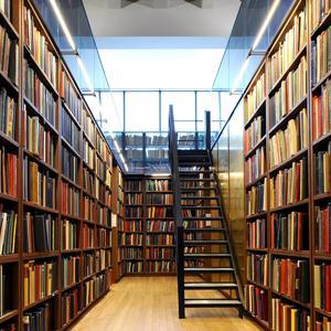 Библиотеки Удельной