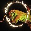 Цирки в Удельной